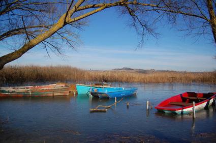 Il Lago di Chiusi e i suoi dintorni   La Locanda del Vino Nobile Montepulciano   B&B a Montepulciano » La Locanda del Vino Nobile   Scoop.it