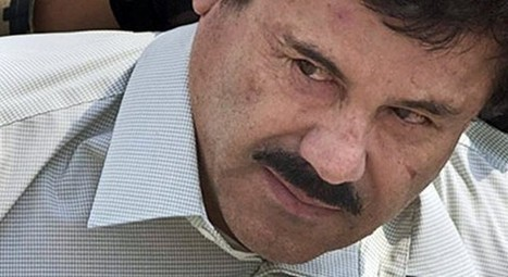 Trapping El Chapo: Chicago's public enemy numberone | Crime and Speculation | Scoop.it