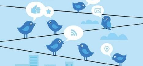 Twitter a-t-il le plus grand panel de consommateurs au monde ?   On avance sur TWITTER   Scoop.it
