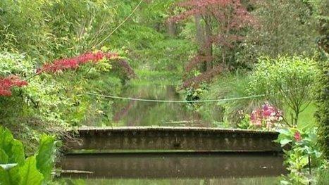 Le conservatoire du houx à Meung-sur-Loire (Loiret) cherche ... - Francetv info   Parcs et Jardins à visiter dans le Val de Loire   Scoop.it