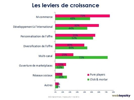 Entre click&mortar et pure players, les axes de croissance divergent | Digital & eCommerce | Scoop.it