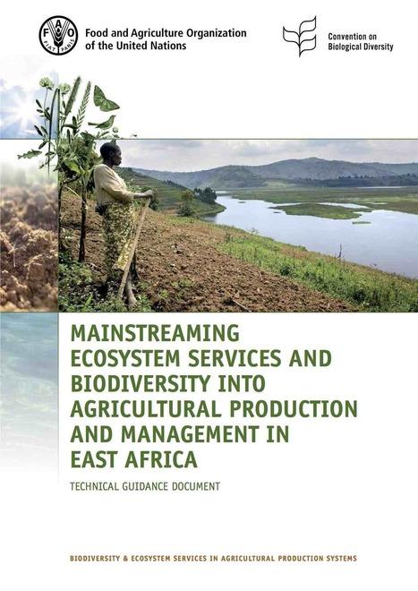 Intégration des services écosystémiques et de la biodiversité en Afrique de l'Est - Médiaterre | ECOLOGIE BIODIVERSITE PAYSAGE | Scoop.it