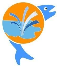 Quercy Aquaculture Poissons d'etangs et d'ornement | 3A : Actualités Aquacoles & Aquaponiques | Scoop.it