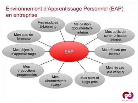 Best of 2013 : organiser son PLE en entreprise | CAFEL + e-Learning | Scoop.it
