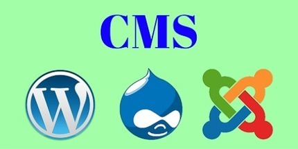 Do You Know About CMS? If Not Then Don't Bother About It, We Are Here to Help You! | Web Application Development Company | Scoop.it