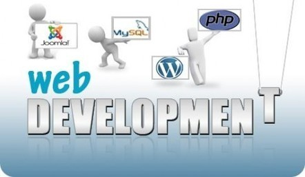 How to choose Specialized Web Development Company in India | Red Logics | Scoop.it