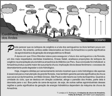 Análise de Tema de Redação - ENEM 2008 | | Redação de vestibular e ENEM | Scoop.it