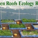 Haifa University Builds Middle East's First Green Roof | Living Beyond Limits | Scoop.it
