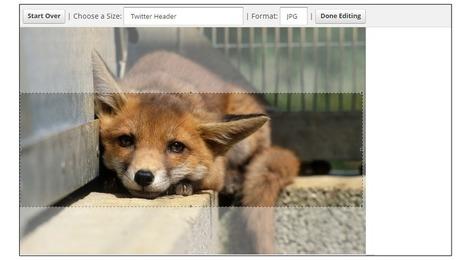 12 herramientas gratuitas para crear el contenido creativo visual perfecto - SocialBro   Herramientas Multimedia   Scoop.it
