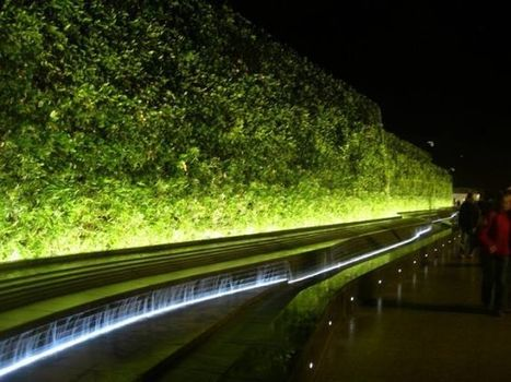 Westfield Green Living wall. Shepherd's Bush, London | The Grant Column | Les facteurs favorisant la créativité | Scoop.it