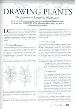 How to Draw Plants for Documentation | Garden Libraries | Scoop.it