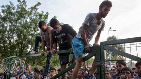 Los 12 culpables de la ola de refugiados en Europa, según 'Politico' - RT en Español - Noticias internacionales | Lo que estudio es noticia!! | Scoop.it