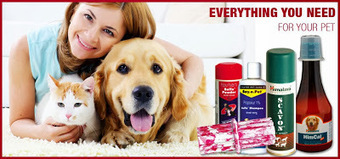 Buy Amazing Gifts From An Online Pet Store This Christmas   Purchase Pet Supplies Online   Scoop.it