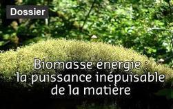 Réseaux intelligents : Alstom et ERDF s'allient | Energies Actu | Smart metering | Scoop.it