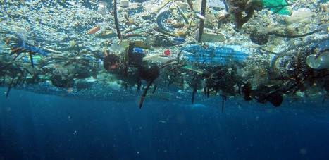 The obscenity of a plastic ocean - k.corcoran@ssc.nsw.edu.au - Santa Sabina College Mail | Geographical Issues | Scoop.it