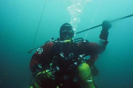 Managing Stress in Diving | X-Ray Mag | All about water, the oceans, environmental issues | Scoop.it