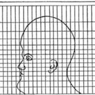 Una cabeza para mostrar cómo los mapas distorsionan la realidad   Investigación Misterio   Scoop.it