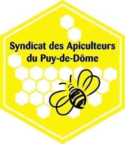 Formation d'Initiation à l'Apiculture | Apis apiculture - des formations en apiculture et des infos apiculturelles | Scoop.it