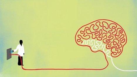 Blood Work: Scientists Uncover Surprising New Tools to Rejuvenate the Brain | ucsf.edu | Social Neuroscience Advances | Scoop.it