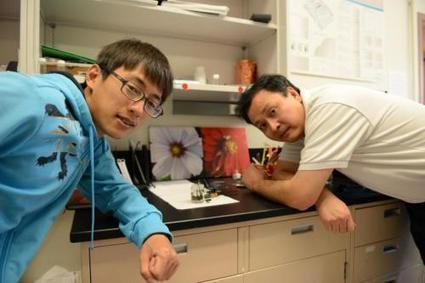 Scientists develop a water splitter that runs on an ordinary AAA battery | Cool Future Technologies | Scoop.it