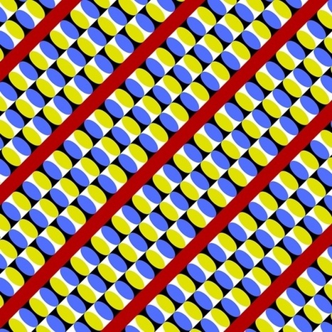 Dizzying optical illusions by Akiyoshi Kitaoka – in pictures | The brain and illusions | Scoop.it