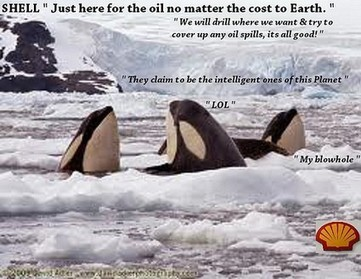 The Fate of #Captive Orcas in 2014. | Odin Prometheus: Earth's History | Scoop.it