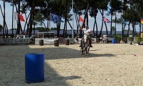 Equitaine met les ânes, mulets et chevaux au travail | Revue de presse : l'agriculture en Aquitaine | Scoop.it