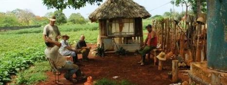Comment les Cubains ont converti leur île à l'agriculture biologique | Infogreen | Le flux d'Infogreen.lu | Scoop.it