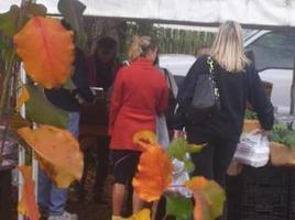 Waxhaw: To market, to market even in bad weather | North Carolina Agriculture | Scoop.it