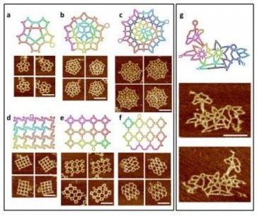 DNA Origami: Novel rare structures built from DNA emerge | Amazing Science | Scoop.it