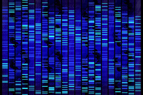 Wait, Could We Make a Computer Out of Our DNA?   SynBio   Scoop.it