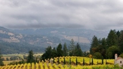 Chinese Investors Shift to Burgundy and California Wine | Vitabella Wine Daily Gossip | Scoop.it
