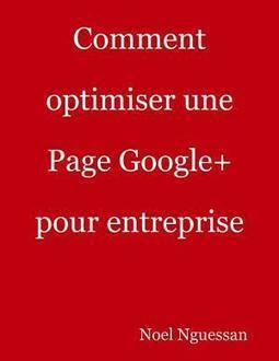 Comment optimiser une Page Google+ pour entreprise | Marketing-survey | Scoop.it