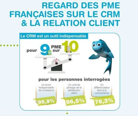 Infographie : Les PME françaises, leur CRM et la relation client   Institut de l'Inbound Marketing   Scoop.it