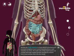 My Incredible Body iPad Review: Like Innerspace but Educational! | iPad Insight | iPads in Education | Scoop.it