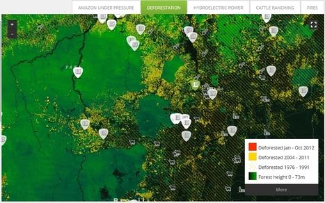 Interactive | InfoAmazonia | TIG | Scoop.it
