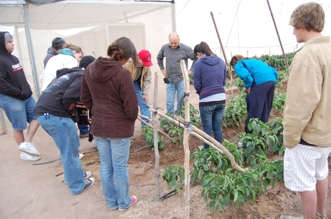 What's your major?: sustainable plant systems teaches students how to manage food processing | CALS in the News | Scoop.it
