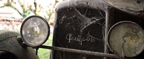 En images: En France, un trésor automobile ignoré pendant 50 ans | Merveilles - Marvels | Scoop.it