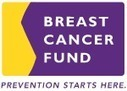 Breast Cancer Fund: Dare Revlon to Go Beyond the Pink | Breast Cancer Advocacy | Scoop.it