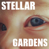 Stellar Gardens | Permaculture, Philosophy & a sustainable future | Scoop.it