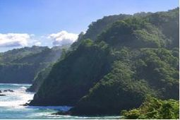 Hawaii mountains withering away - The Times of India | Agua | Scoop.it