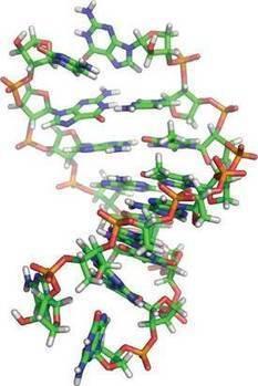 Origine de la vie : et si l'ATN avait précédé l'ADN et l'ARN ? | La Mémoire en Partage | Scoop.it