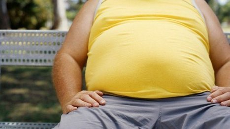 Obesity Is a Global Epidemic | FOOD STUDIES IN THE NEWS | Scoop.it