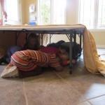 Hibernating bears in preschool | Teach Preschool | Scoop.it