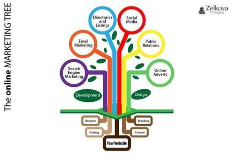 Web Design and Development Services in Australia   Zelkova Consulting   Scoop.it