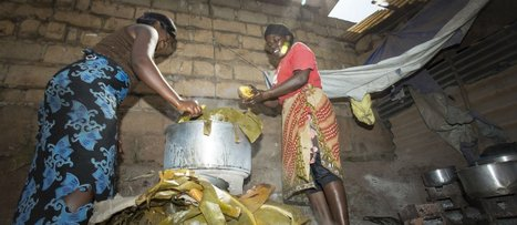 Empowering Ugandan girls as environmental change agents | Clean Cookstoves | Scoop.it
