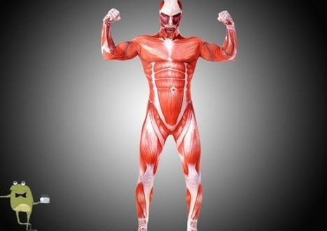 Shingeki no Kyojin Colossal Titan Zentai Suit Costume | Attack on Titan Cosplay Costumes | Scoop.it
