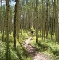 Soul Renewal Wilderness Retreat!   Wild Resiliency   Scoop.it