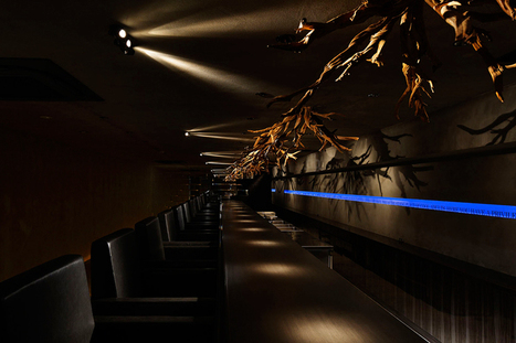 supermaniac inc. design imaginary forest in bar 005 - designboom | Contemporary Art, Design and Technology | Scoop.it