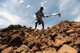 FAO -Portail en ligne sur la santé des sols | Chimie verte et agroécologie | Scoop.it
